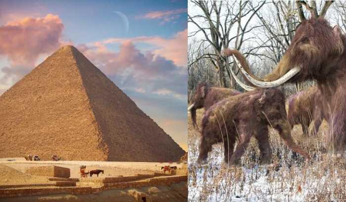 Τα μαμούθ ήταν ζωντανά όταν χτίστηκαν οι πυραμίδες της Γκίζας