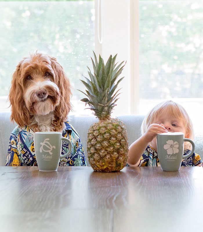 Μοναδική φιλία αγοριού με σκύλο!