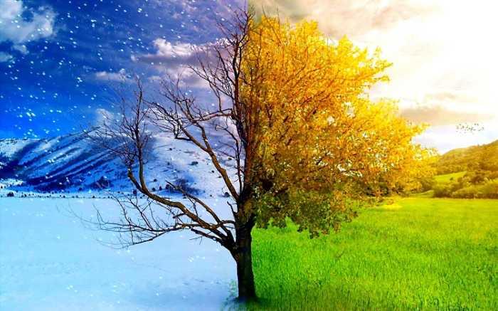 Timelapse βίντεο παρουσιάζει μια τοποθεσία όλες τις εποχές του χρόνου!