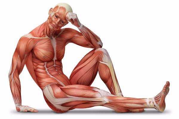 95 συναρπαστικά πράγματα για το ανθρώπινο σώμα που δεν ήξερες!