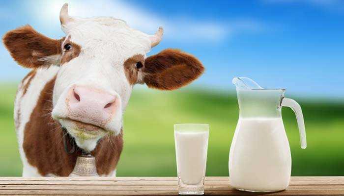 Πώς λειτουργεί το γάλα σαν αποσμητικό