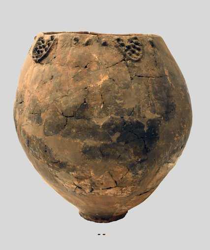 Το αρχαιότερο κρασί στον πλανήτη ηλικίας 8.000 ετών!