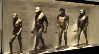 Επιστήμονες «καταρρίπτουν» την θεωρία του Δαρβίνου: «Όλοι προερχόμαστε από δύο μόνο ανθρώπους»