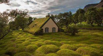 Υπέροχες πράσινες στέγες σκανδιναβικών σπιτιών!